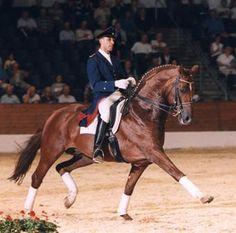 Wolkentanz - 1991 Hanoverian Dressage Stallion (Weltmeyer - Ludendorff…