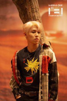 Wanna One Album Jacket Behind Cut Yg Entertaiment, Cho Chang, Produce 101 Season 2, Kim Jaehwan, Ha Sungwoon, 3 In One, Kpop Boy, Jinyoung, South Korean Boy Band