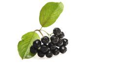 Get the lowdown on chokeberry juice and why athletes may be seeing it everywhere in the near future.