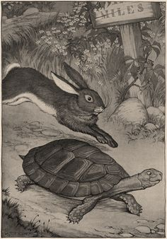 Classic The Tortoise & The Hare Picture