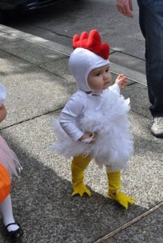 animal, baby, chicken, child, colors