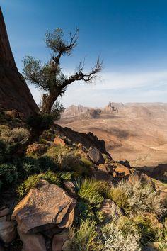 Ahaggar Desert (Algeria)