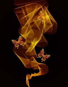 Black Background with Bright butterfly vector graphic 01