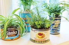 Vintage Coffee Can Planters via Leslie Reese