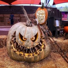 The Halloween season is here. The same old Pumpkin decoration will not be enough to fulfill your excitement. Here are some pumpkin carving ideas that would. Scary Pumpkin Carving, Spooky Pumpkin, Pumpkin Carvings, Pumpkin Ideas, Pumpkin Designs, Pumpkin Patterns, Giant Pumpkin, Carving Pumpkins, Pumpkin Art