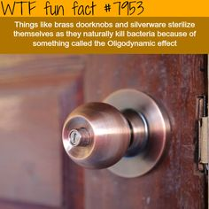 Oligodynamic effect - WTF fun fact