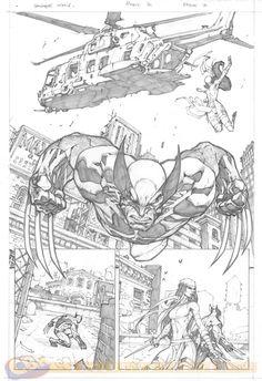 Wolverine & Elektra