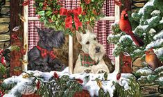 --Scottish Terrier - Christmas Company (Black & Wheaten)