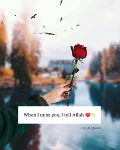 Muslim Couple Quotes, Muslim Love Quotes, Love In Islam, Allah Love, Romantic Love Quotes, Love Quotes For Him, Muslim Couples, Shyari Quotes, Motivational Quotes For Women