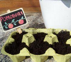 Come coltivare orto sul balcone e terrazzo: RICICLO: CONTENITORI UOVA PER SEMINE VERDURE