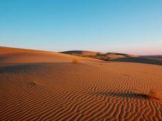wüste - Google-Suche