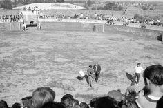 ruedo de la plaza de toros | Antigua Plaza de Toros de Benavente (2ª parte)
