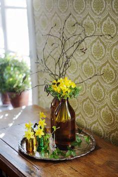 Så här lyser du upp ditt hem med påskliljor – Icakuriren Spring Flower Arrangements, Spring Flowers, Midsummer's Eve, Ikebana, Garden Inspiration, Planting Flowers, Bouquets, Pots, Glass Vase