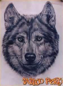 Tatuaje Lobos  Tattoo Lobo Id 4311 PeeTeePICS