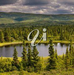 iPHOTOS.com - Stock Photo of Serenity Lake in the Tundra in Alaska #photo #photography #lake