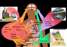 Top 45 health effects of pollution