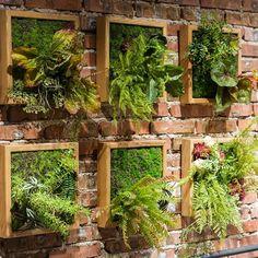Vertical Garden Wall, Garden Wall Art, Vertical Gardens, Garden Walls, Small Garden Wall Ideas, Vertical Planting, Plantas Indoor, Succulent Wall Art, Succulent Wall Gardens