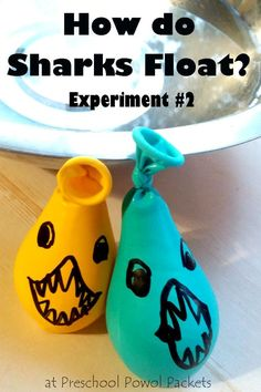 Awesome experiment showing how sharks float! Perfect for preschool, kindergarten, and older kids! Great for ocean themes, ocean units, and shark week!