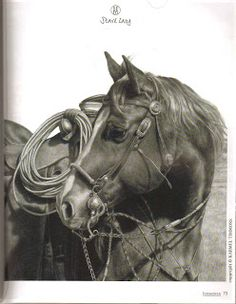Karmel Timmons: Equestrian Art In Pencil: Blog