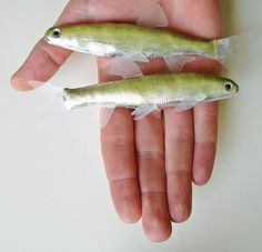 These are made from silver lame fabric and plastic food containers for the transparent fins. The eyes are made from silver chocolate wrapping for the sclera and bicycle innertube rubber for the pupils, held together with globs of transparent plastic glue to give it dimension and a glossy, wet eye look.