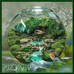 Water Features, Terrarium, Aquarium, Home Decor, Water Sources, Terrariums, Goldfish Bowl, Decoration Home, Room Decor