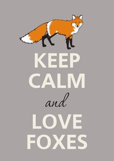 Keep calm and love foxes by Agadart on Etsy Wallpaper Iphone Cute, Cute Wallpapers, Fox Memes, Fox Facts, Funny Animals, Cute Animals, Fox Drawing, Fox Painting, Fox Pictures