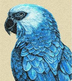 Parrot photo stitch free embroidery design 3 - Photo stitch embroidery designs - Machine embroidery community
