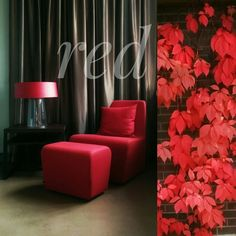 Color of the Week: Red by @detaljee