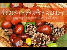 Nature Crafts for Autumn