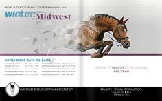 Winter Series of the Midwest