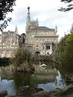 Bussaco Palace Hotel. The Palace Hotel do Bussaco is a remarkable Portuguese hotel located in the heart of a natural woodland reserve in Bussaco, Portugal. This exquisite hotel is a superb representation of The Portuguese 'Manueline' style of period architecture.