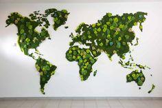 Mur Végétaux: Espaces de bureaux de style translation missing: fr.style.espaces-de-bureaux.eclectique par Green Mood