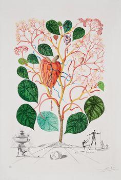 Salvador Dali Begonia (from Flordali series) 1968
