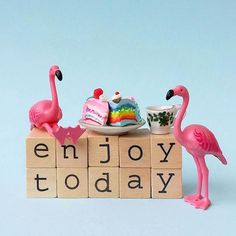 Because you never know what tomorrow holds hey @aflamingoaday? Be thankful for what you have I say :) #flamingos #behappy #thankful