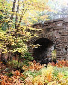 Rustic Bridge in Maine