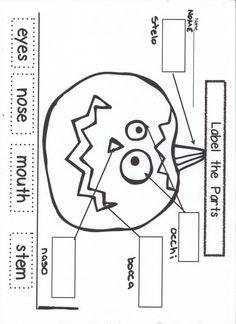 Learning English/Italian Worksheet and having fun:  Pumpkin / Zucca