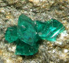 Ramsbeckite crystals / Penrhiw Mine, Wales