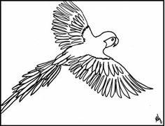 free coloring pages tropical birds-#24