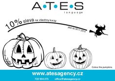 Slavte Halloween po celý listopad a využijte naší speciální slevy 10% na všechny kurzy v Praze i v Kamenici