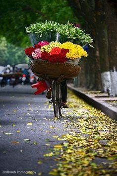 <3Flowers basket on bike<3…