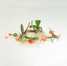 The Gastronomic rendezvous are not over… experience the best flavors of Lake Como with us! Tonight – Lake Fish: http://bit.ly/1Q4iBrM Le serate a tema del Ristorante Orangerie non sono ancora terminate. Questa Sera il menù sarà dedicato al Pesce del Lago di Como - scopri di più: http://bit.ly/28KmD49  #Ristorante #Orangerie #Restaurant #LakeComo #LagodiComo #Pesce #Italy #Italia