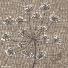 Jo Butcher - Jo Butcher - Cow Parsley on Linen II