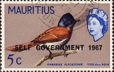 Mauritius 1967 Birds Overprinted Self Government Fine Used SG 352 Scott 309 Other Commonwealth Stamps Here