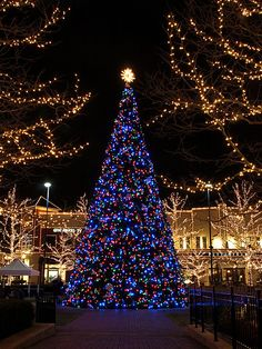 Where to See the Best Christmas Light Displays in Columbus, Ohio - Places to visit Best Christmas Light Displays, Best Christmas Lights, Christmas Scenery, Hanging Christmas Lights, Christmas In The City, Christmas Mood, Noel Christmas, Outdoor Christmas, Holiday Lights