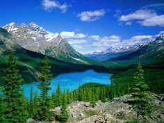 Peyto Lake ~ Canadian Rockies, Banff National Park, Alberta, Canada (photo courtesy Download Nation)....