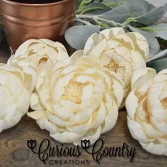 ***NEW FLOWERS*** Sola Wood Peonies are in store, ready for your spring decorating and crafts! Handmade with attention to detail, can be used in their natural cream color or dyed any custom color. Try some today! #solaroses #solaflowers #peonies #woodflowers #ecofriendly #ecoflowers #foreverflowers #diycrafts #diyhomedecor #flowerarranging