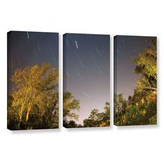 Star Trails by Cody York 3 Piece Gallery-Wrapped Canvas Set