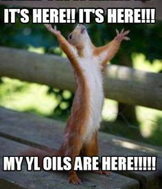 young living essential oils meme