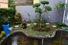 Pond, Aquarium, Garden, Plants, Goldfish Bowl, Water Pond, Aquarius, Garten, Lawn And Garden
