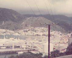 Picton (1974).